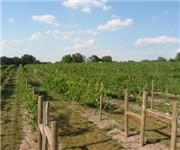 Photo of SchillingBridge Winery and MicroBrewery - Pawnee City, NE